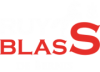 Ruy Blass de Bernis