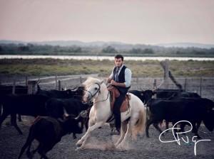 Trie de bétail, sélectionnés pour le concours de trie Camagri 2019